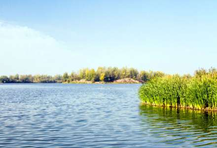 Jezero Vrbice
