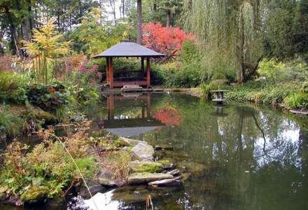 Jablunkovské arboretum