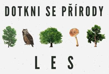 Dotkni se přírody - les