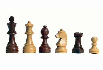 Šachový turnaj pro dospělé