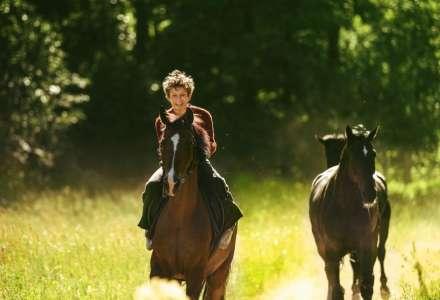 Jít krást koně