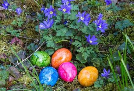 Hledání velikonočního vajíčka