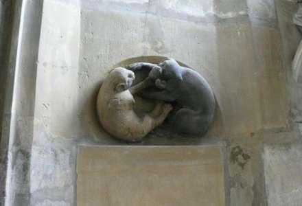 Kočka ve středověku - přednáška Marka Zágory