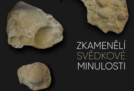 Zkamenělí svědkové minulosti
