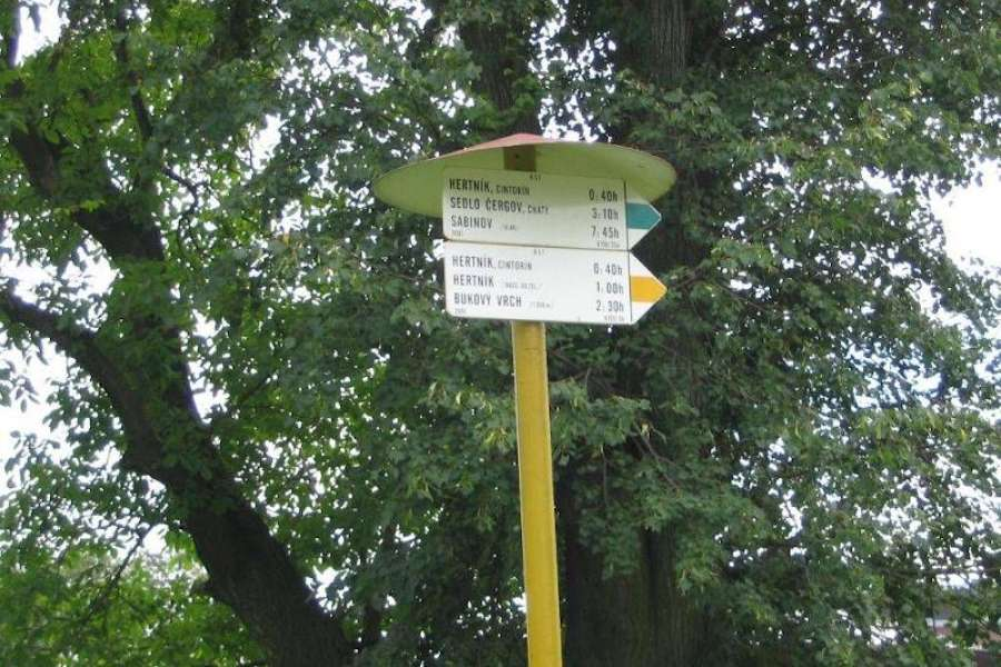 Turistika: Třemešná - Město Albrechtice