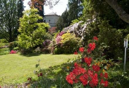 Jaro v arboretu