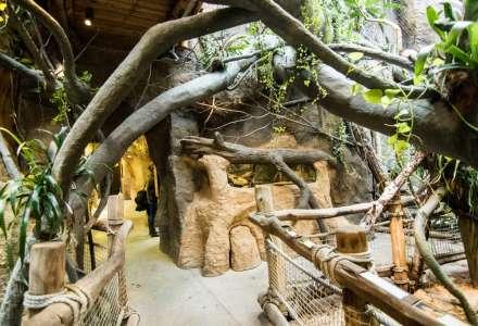 Zoo Ostrava otevřelo nové expozice v Pavilonu evoluce