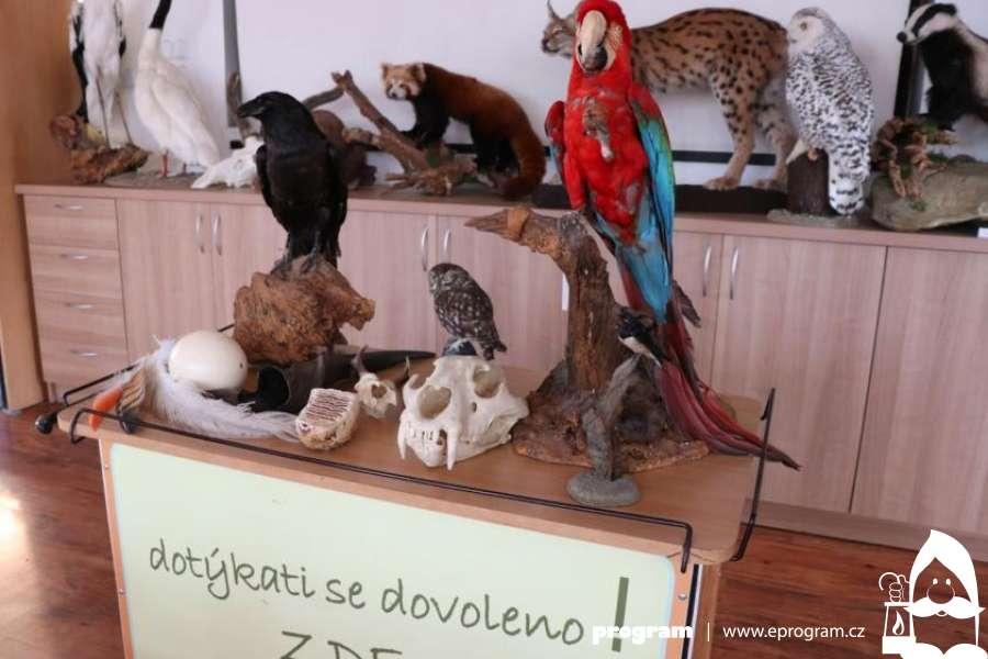 Jarní prázdniny v Zoo Ostrava