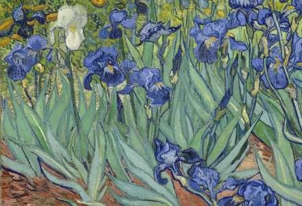 Van Gogh & Japonsko