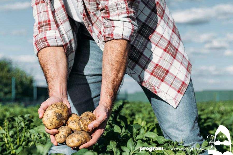 Rohlík pomáhá farmářům - startuje unikátní podpůrný program pro malé dodavatele
