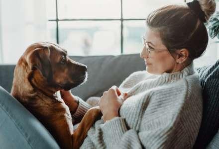 Nešvary psích páníčků, které se nejspíš týkají i vás