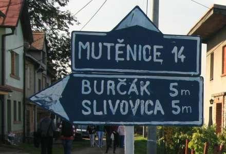 Burčákovým rychlíkem za zážitky do Mutěnic