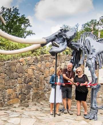 Mamut v Zoo Ostrava