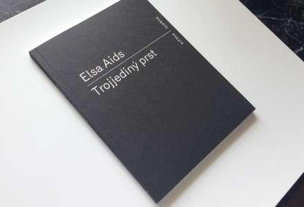 Elsa Aids v Plato